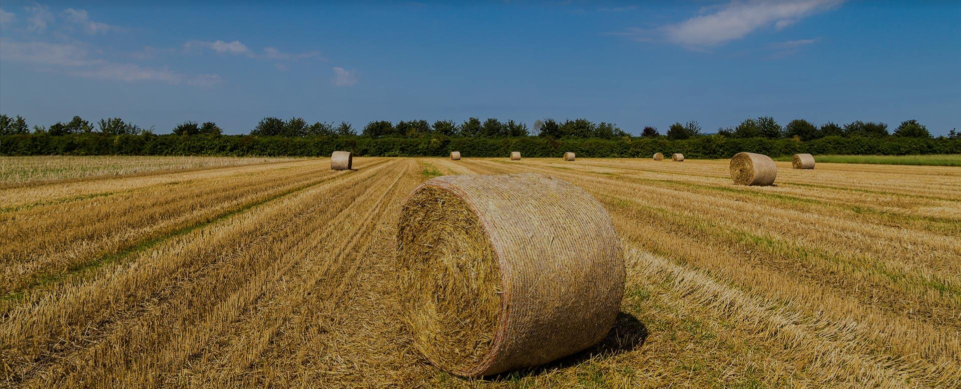 KSI Supply Bale Net